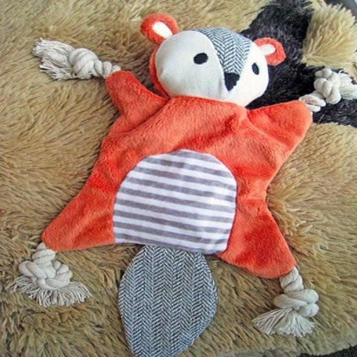 orange squirrel toy on the ground
