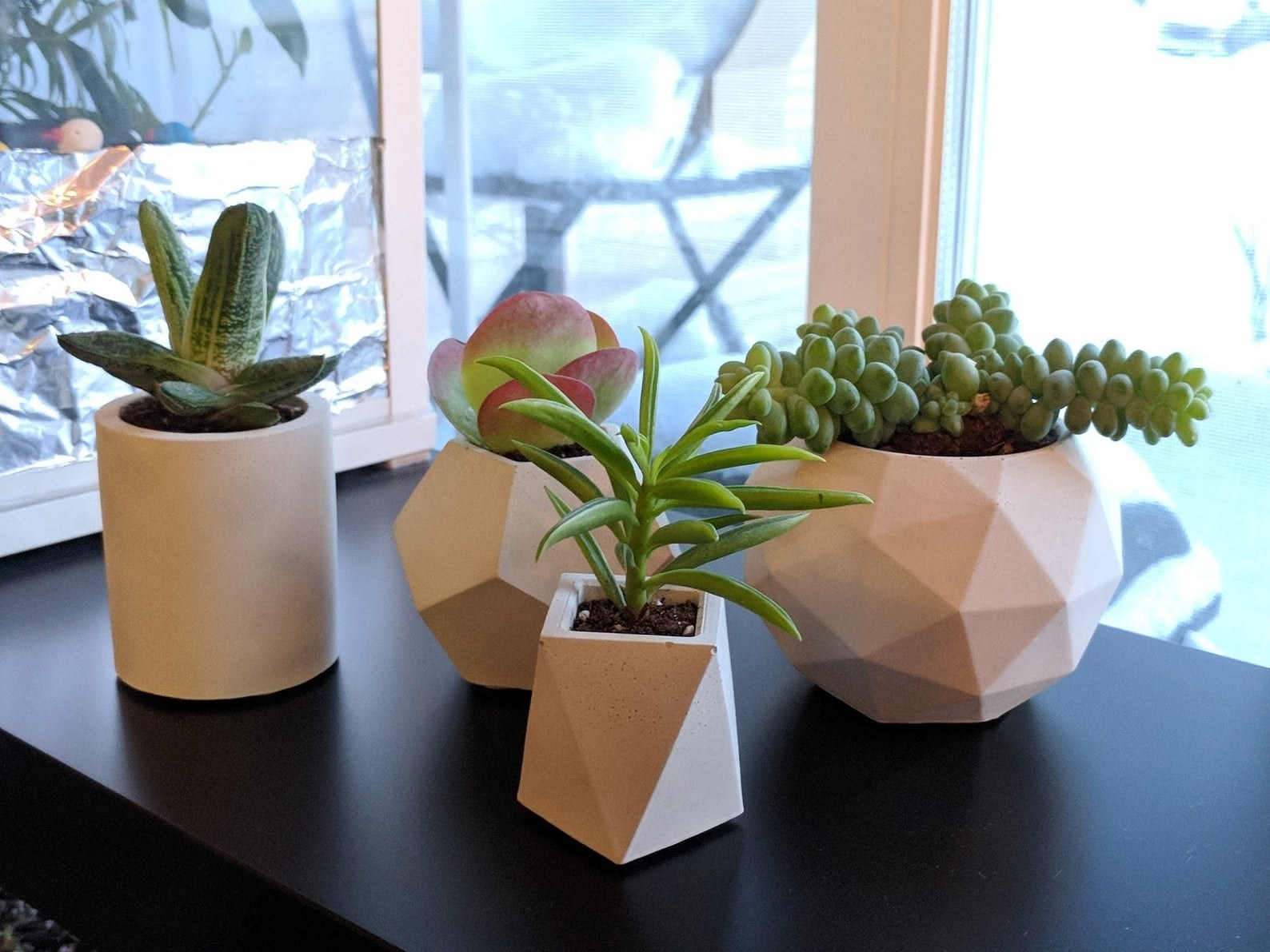 four different geometric planters with different kinds of succulents in them