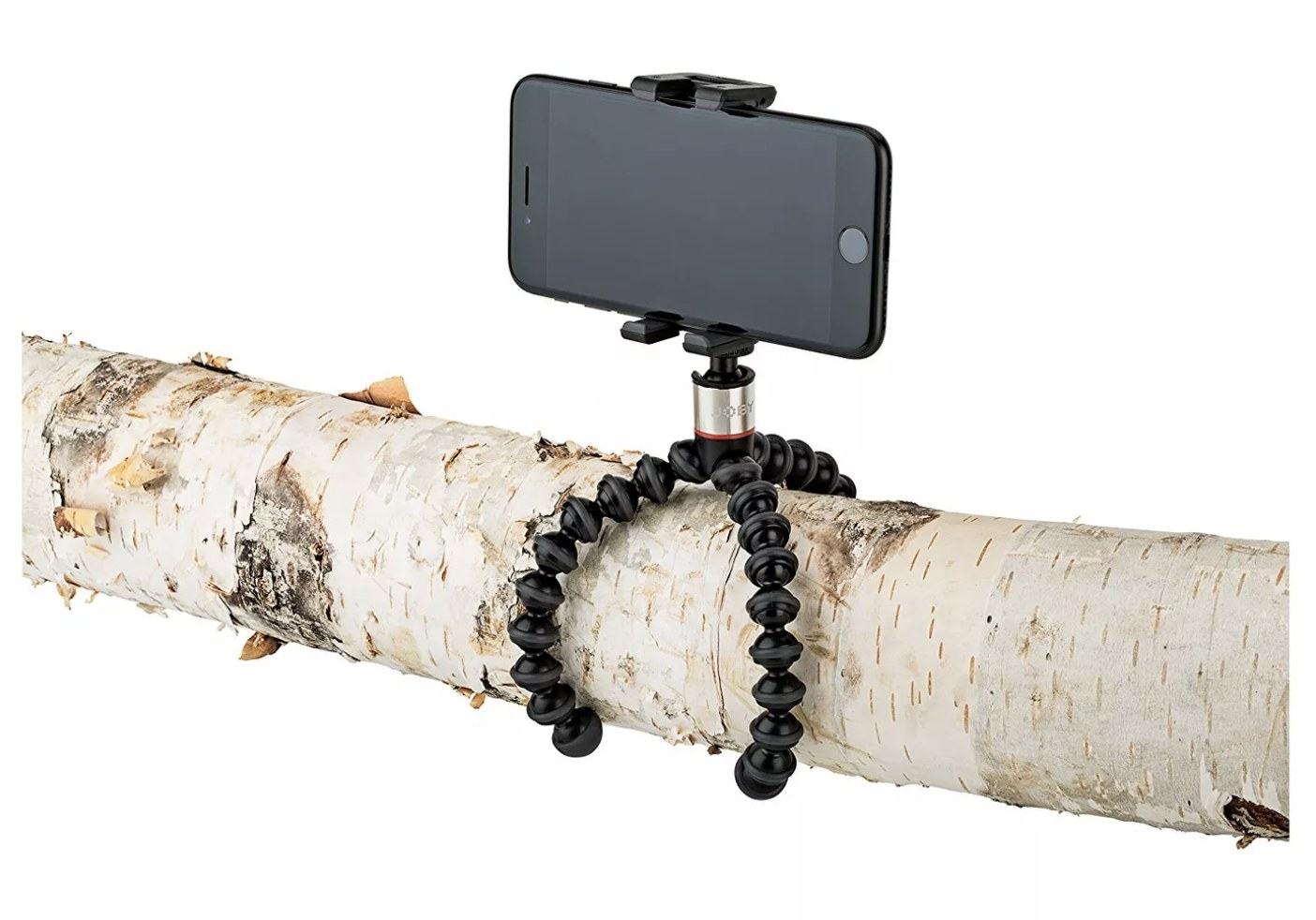 The stand with a phone on it gripping a branch
