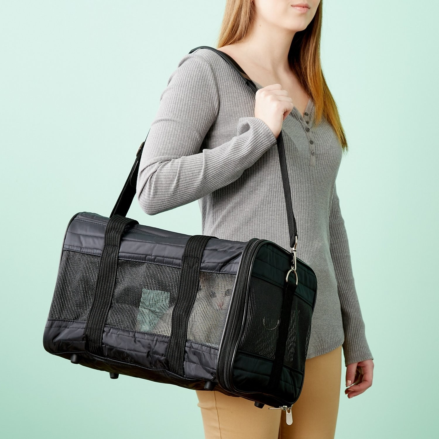 A person carrying the carrier, with a cat inside