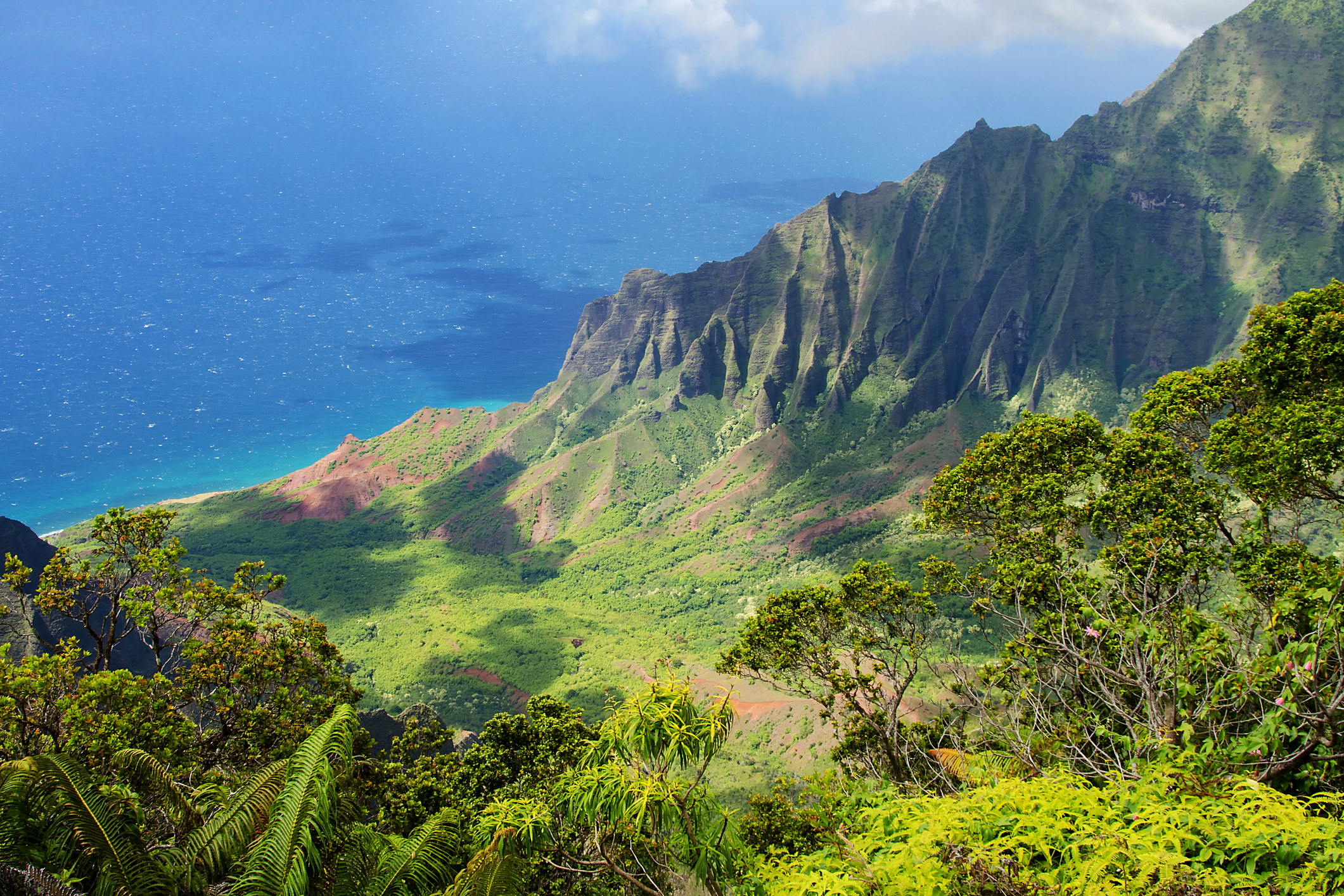 Green-covered mountains leading down to a blue ocean