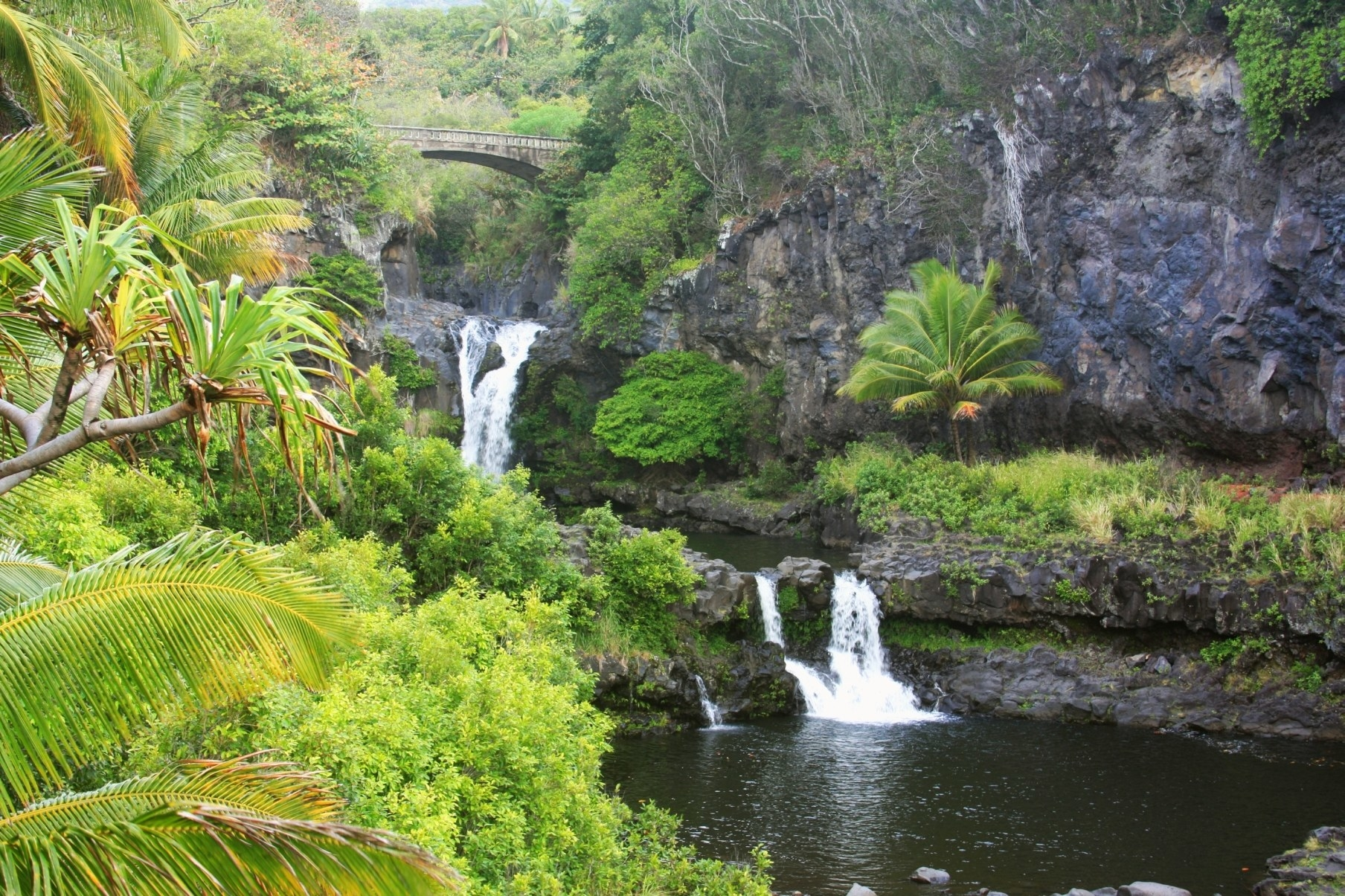 A series of waterfalls and pools in a lush landscape