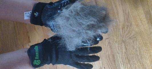 A person demonstrating how much hair they removed with the gloves (it's very impressive!)