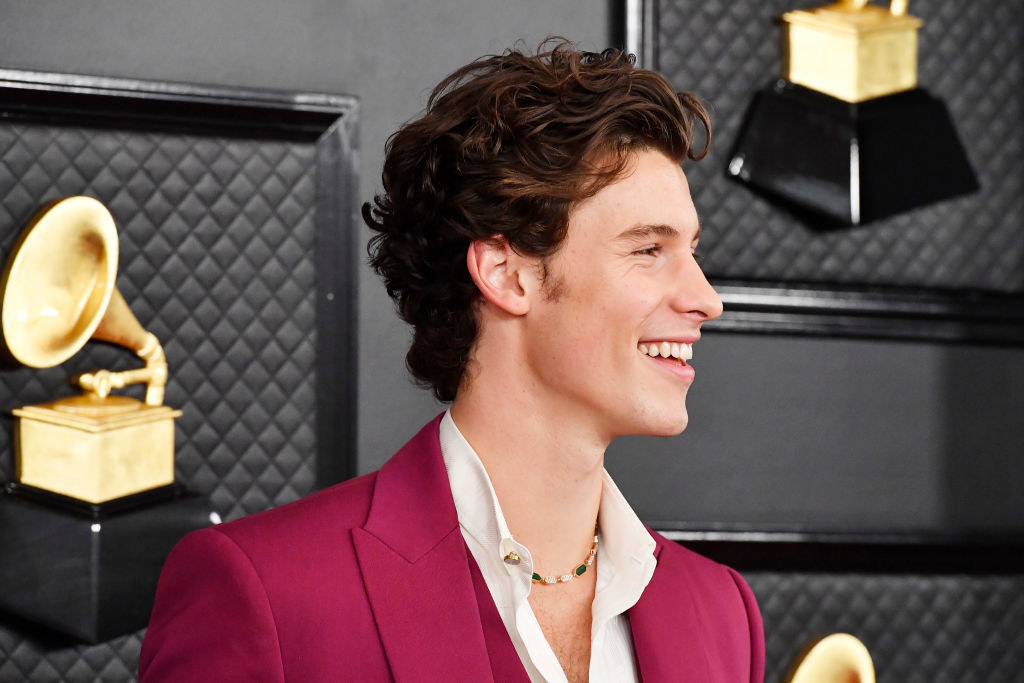 Shawn at the Grammys