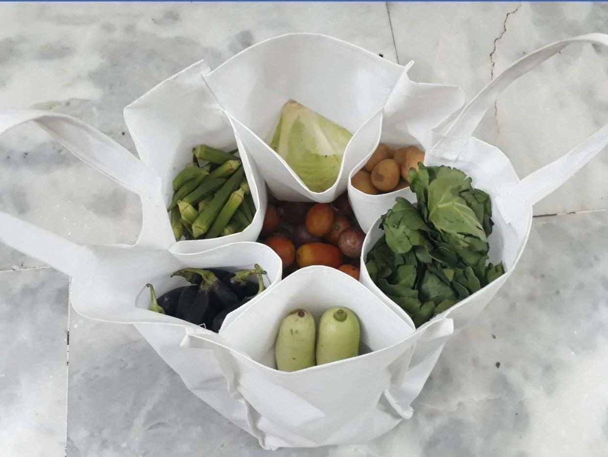 A grocery bag with compartments of vegetables in it