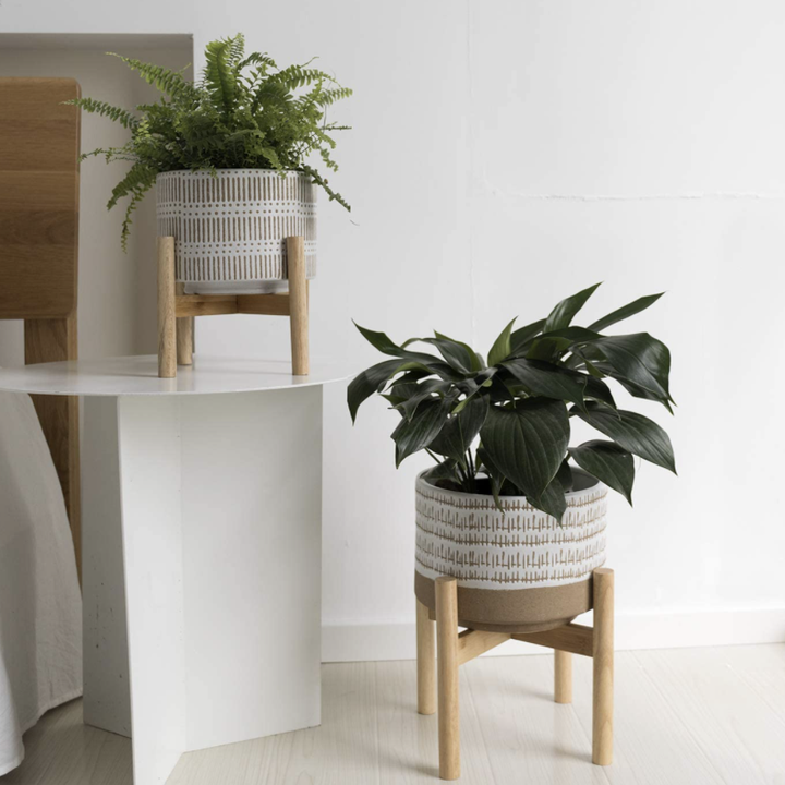 Ceramic plant pot and wood stand