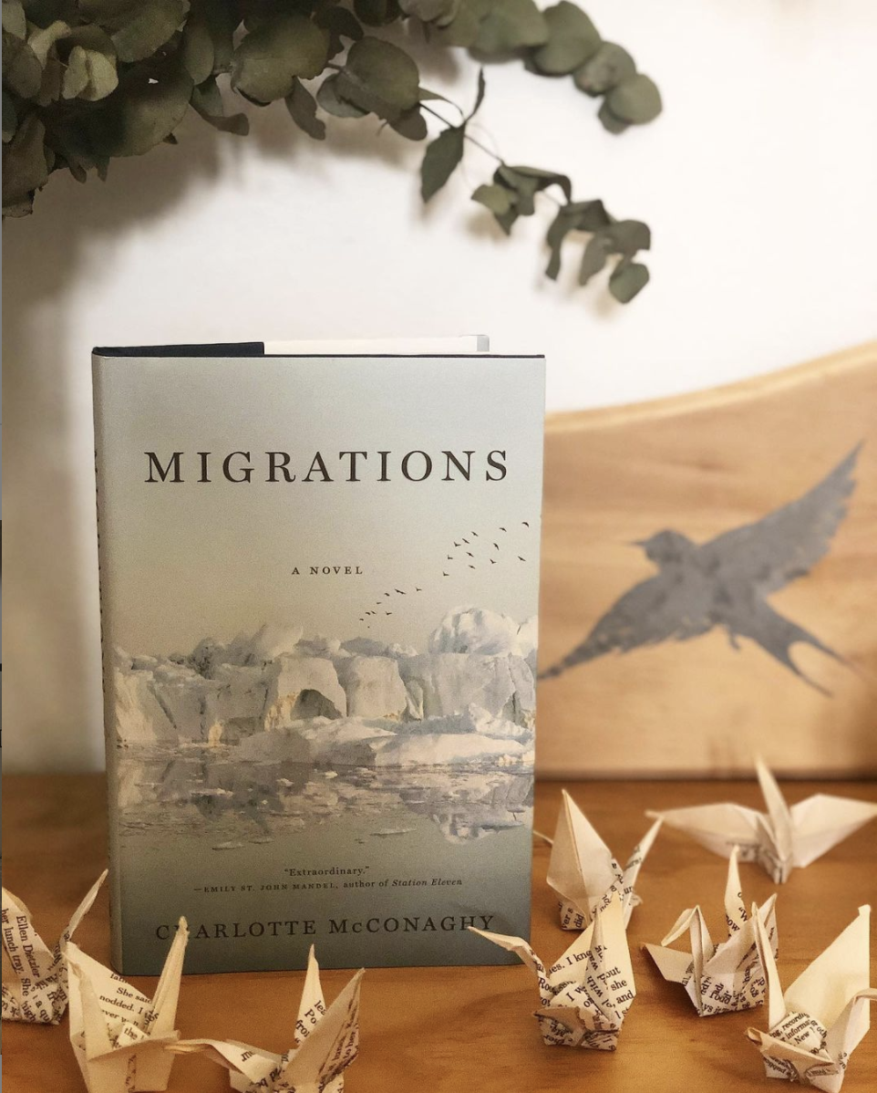 the cover of the book which has glaciers on it and paper swans