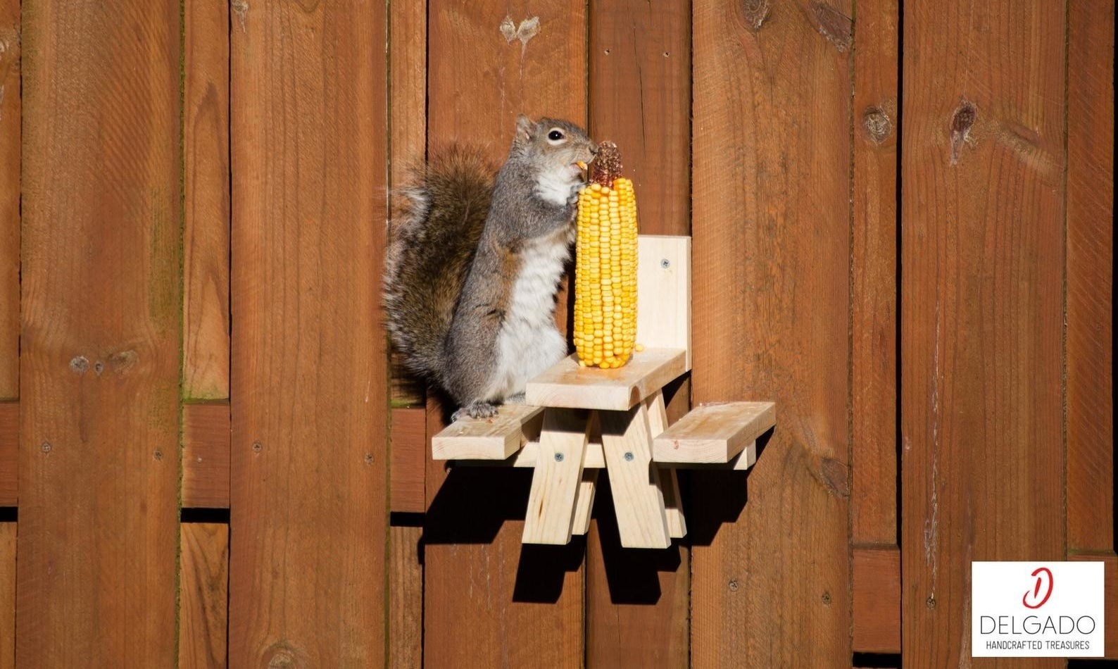 A squirrel sitting at the feeder table