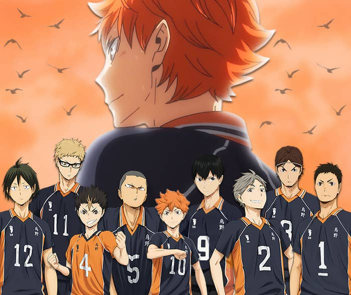 The members of Karasuno's high school volleyball club; Hinata Shoyo is in the background along with some crows flying