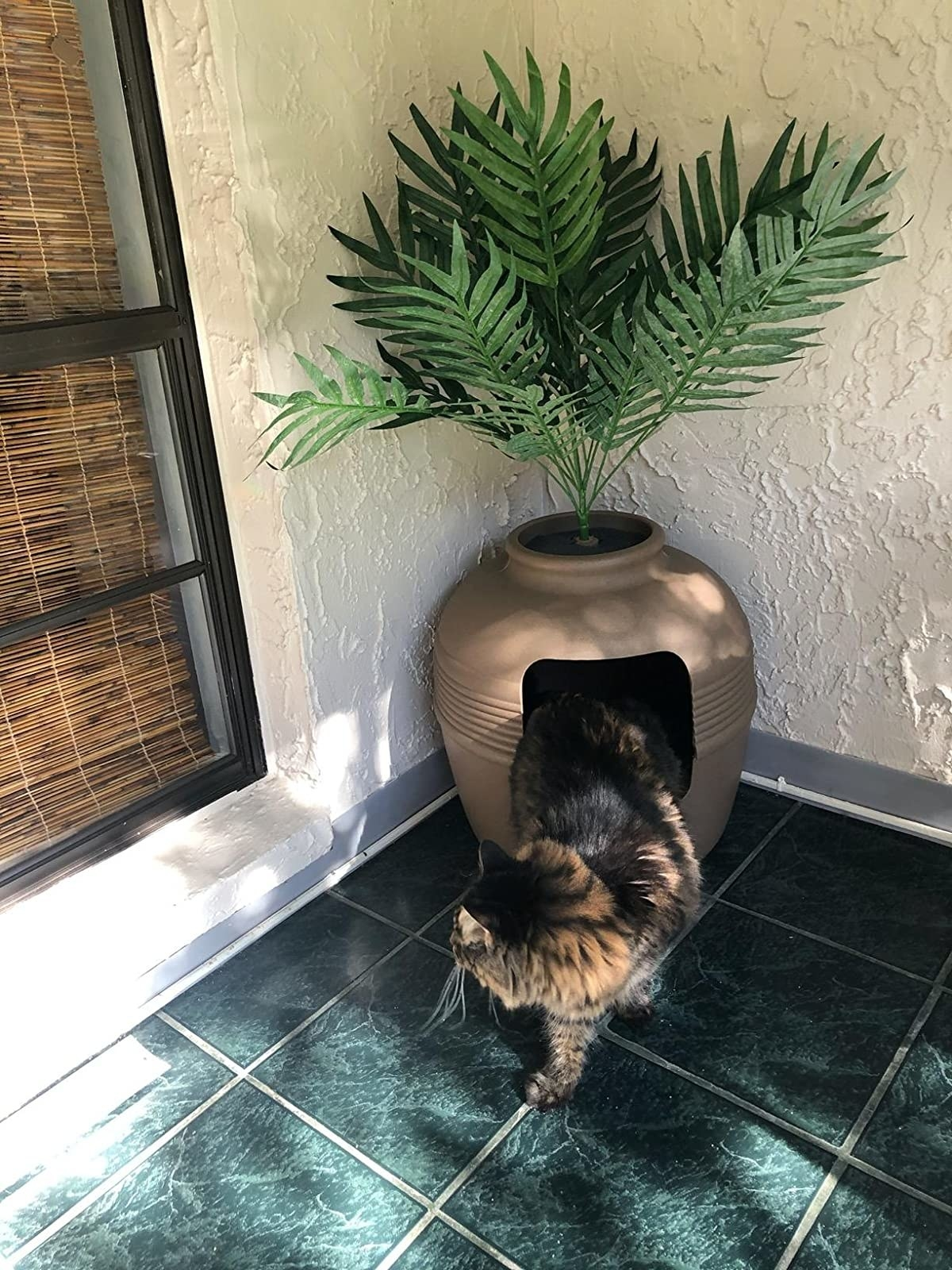 Reviewer cat using kitty litter box plant
