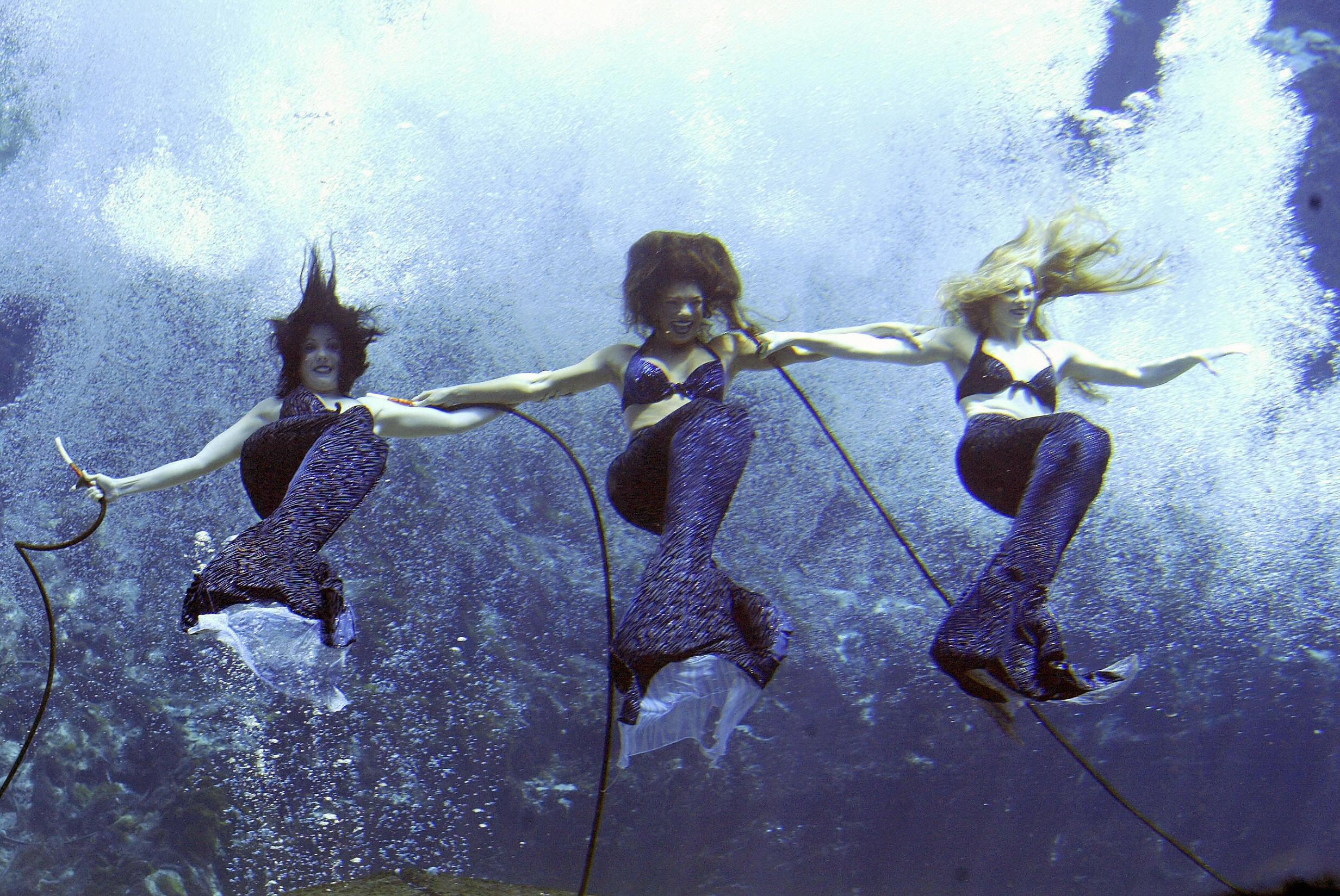 Three mermaids underwater