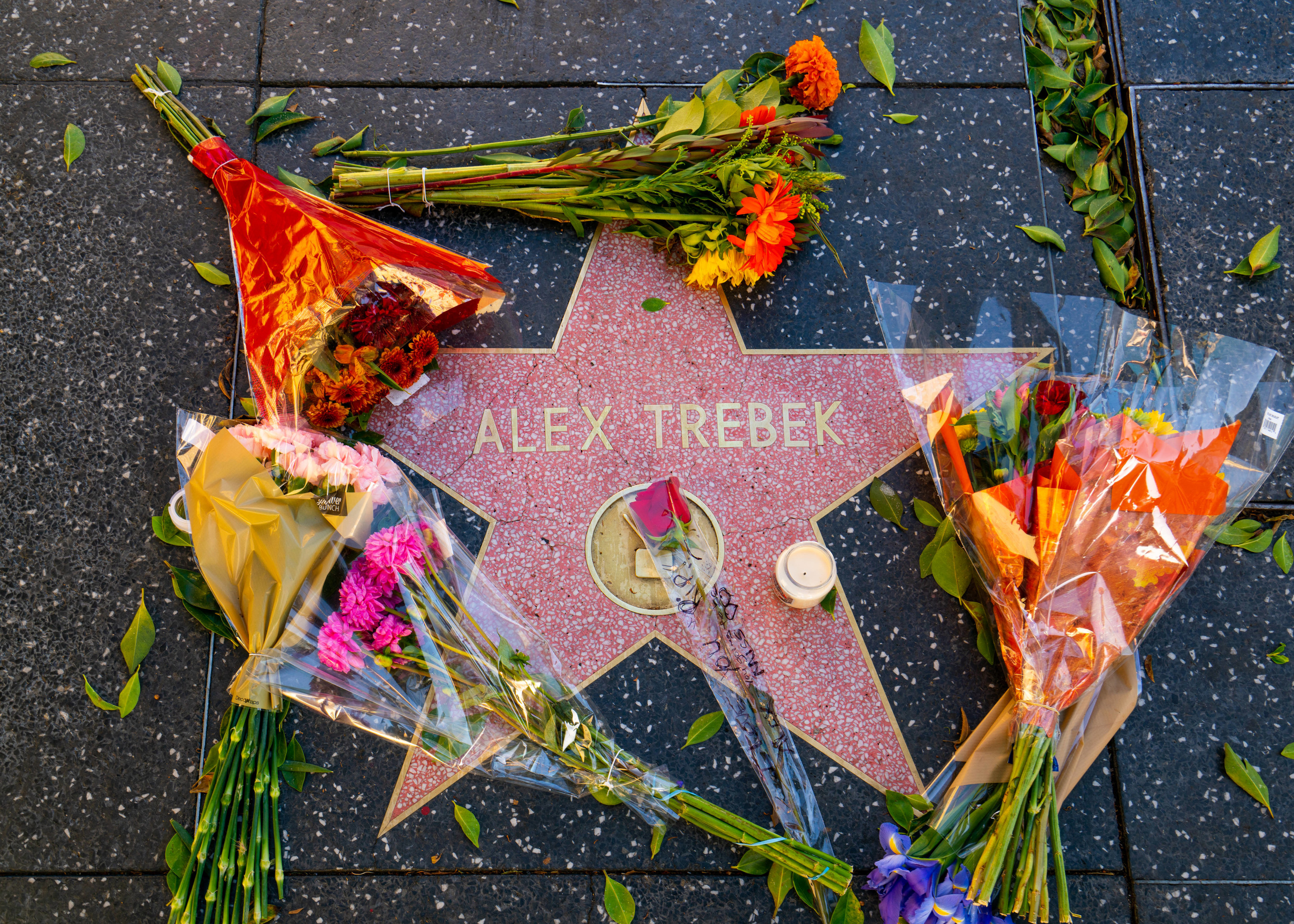 Flowers surround Alex Trebek's star on the Walk of Fame after the announcement of his death
