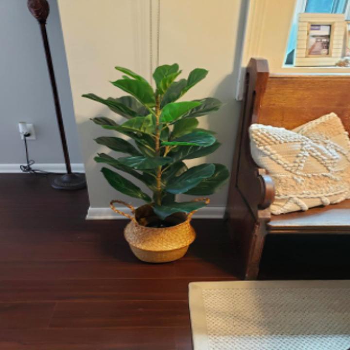 faux fiddle leaf fig houseplant in a basket