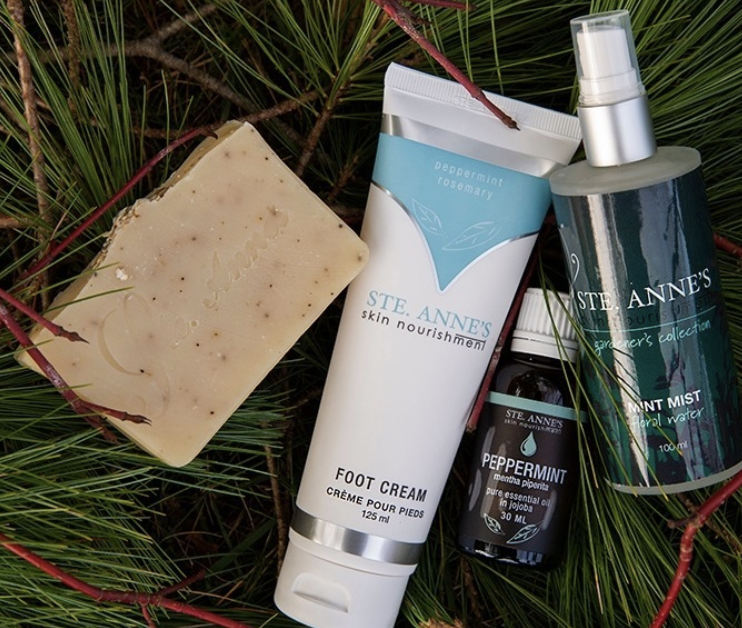 Several beauty products on a pile of tree sprigs