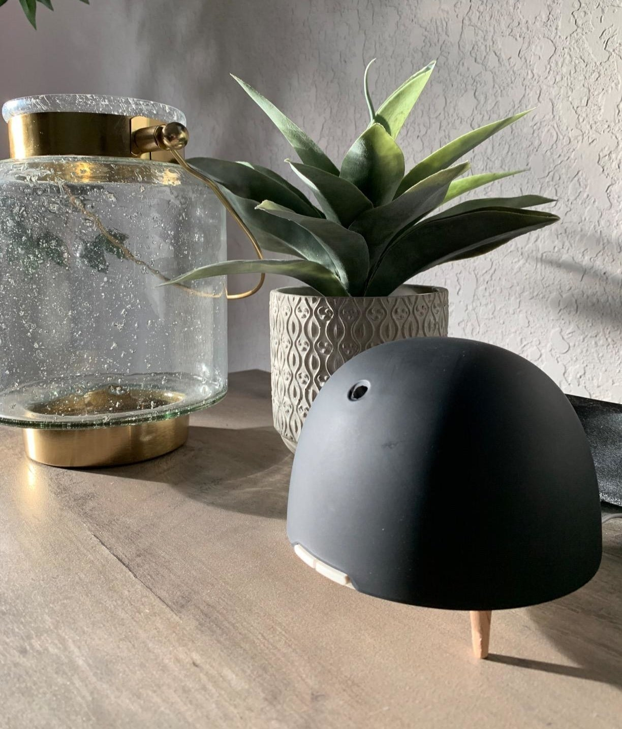 A reviewer's photo showing black diffuser on a table next to a succulent