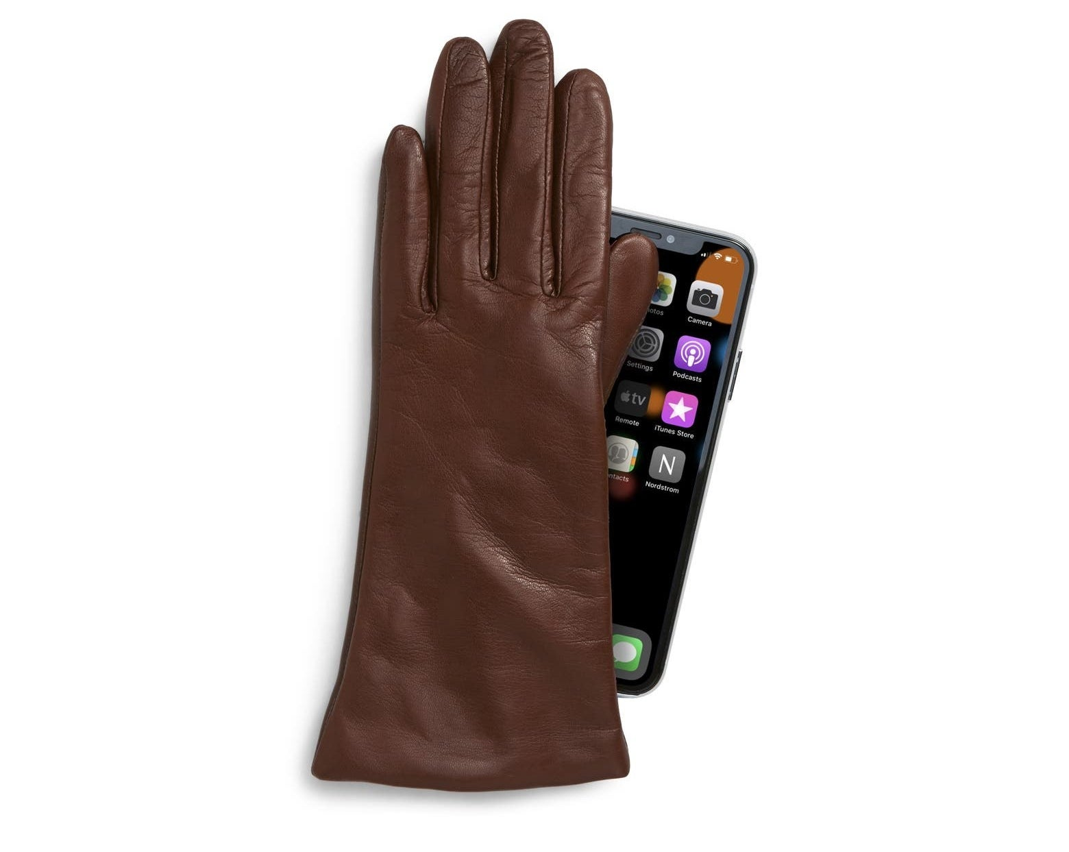 The brown leather gloves