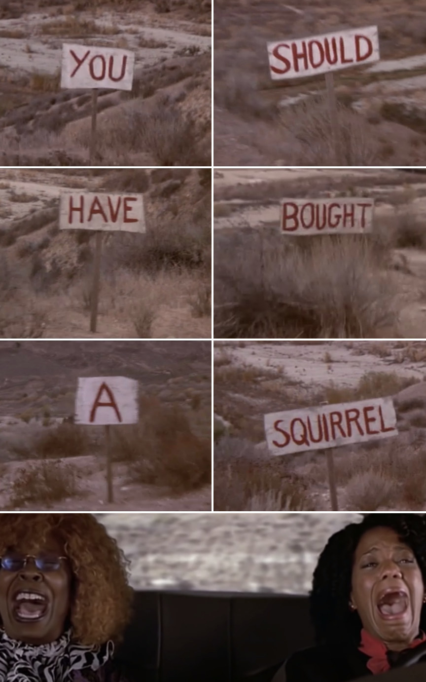 """Vera and Merrill driving down a ditch while reading wooden signs that say: """"You should have bought a squirrel!"""""""