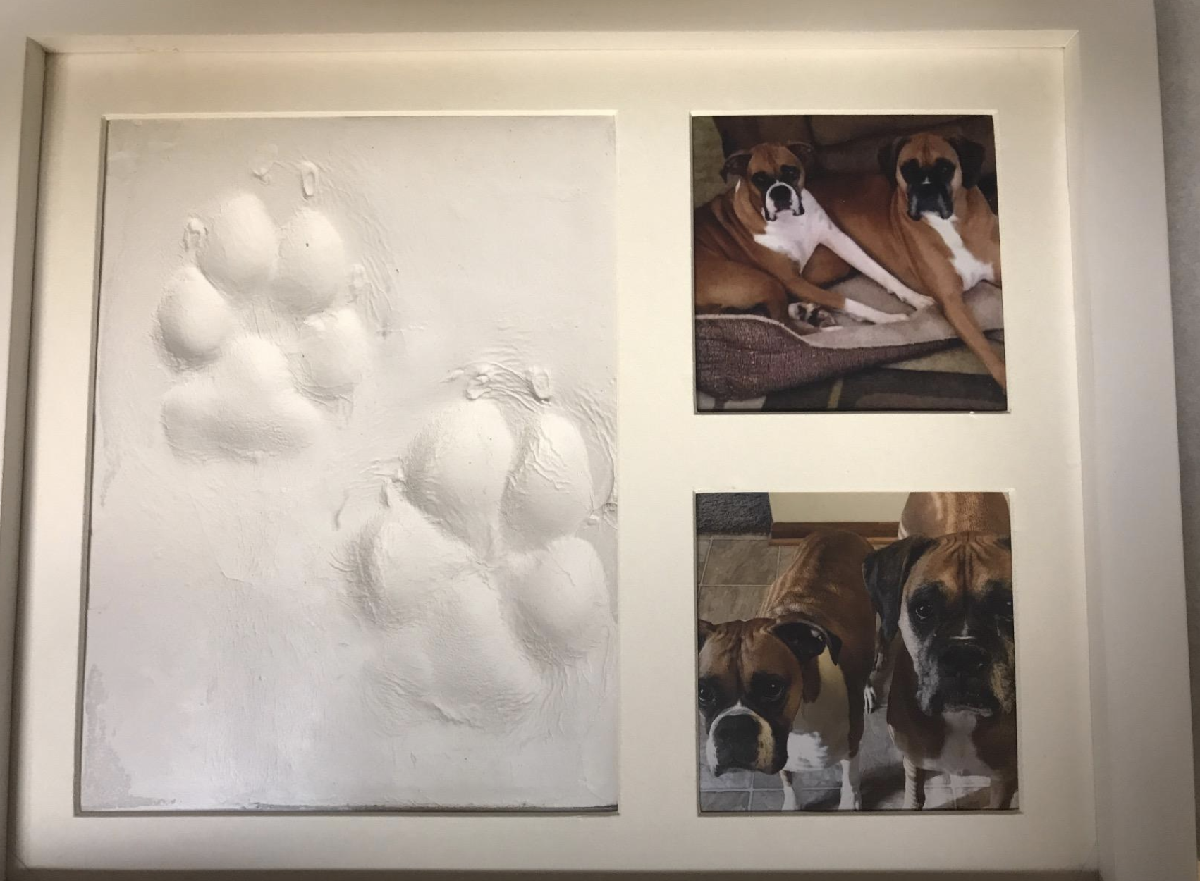 reviewer photo of the frame with paw prints and two pictures of Boxer dogs