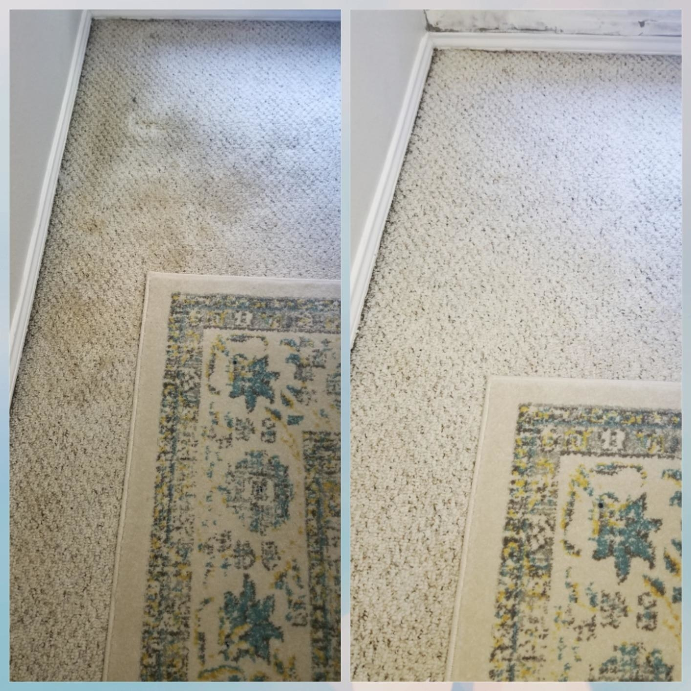 On left, reviewer's dirty carpet before using instant stain remover. On right, same carpet with less discoloration and stains
