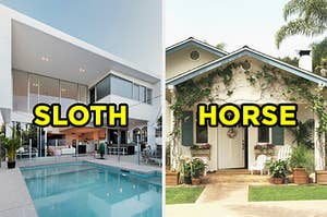 "On the left, a modern home with a pool in the backyard labeled ""sloth,"" and on the right, a house with rocking chairs on the front porch and vines growing around it labeled ""horse"""