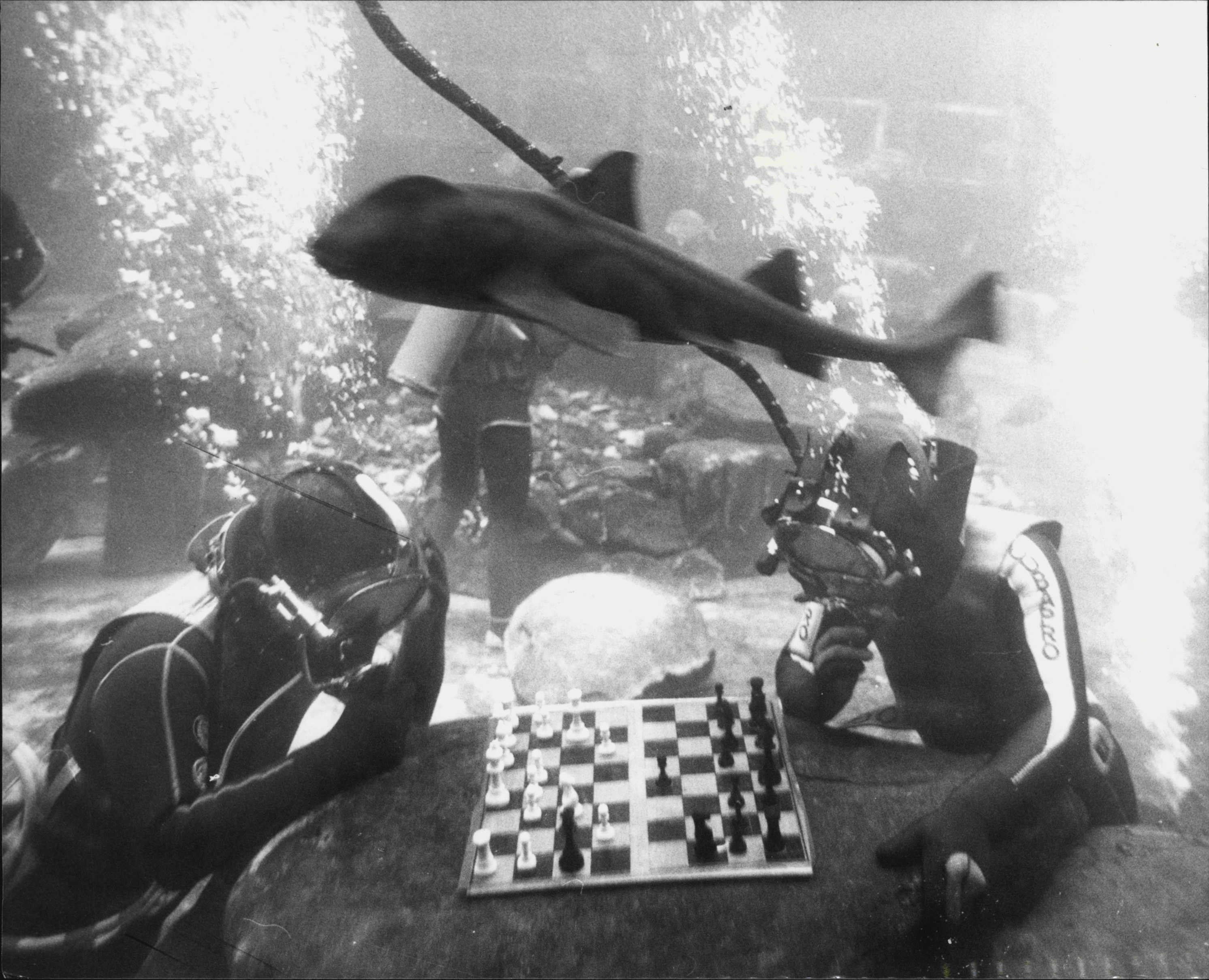 Two men in scuba suits play chess underwater as a big fish swims over their heads
