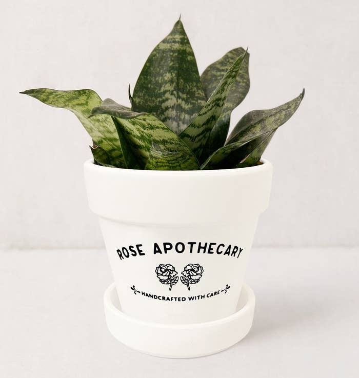 A planter that says Rose Apothecary, Handcrafted with Care