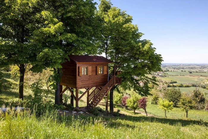 A wooden hut on stilts built next to trees on a hill overlooking farmland