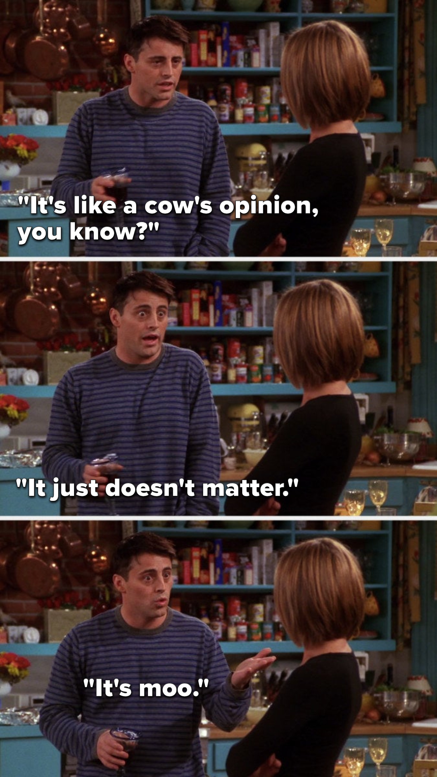 """Joey says, """"It's like a cow's opinion, you know, it just doesn't matter, it's moo"""""""