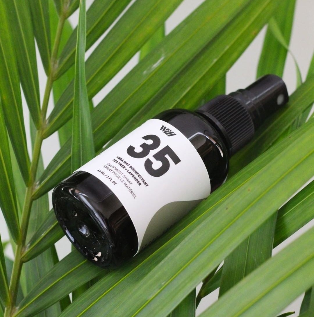 The bottle of spray on a palm leaf