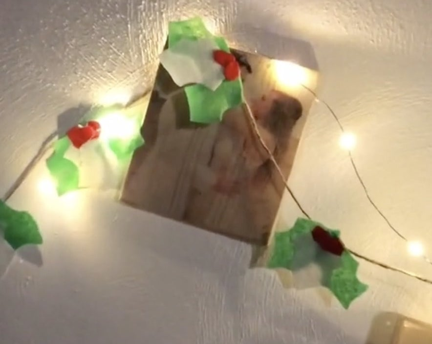 Green felt garland hanging with lights on a wall