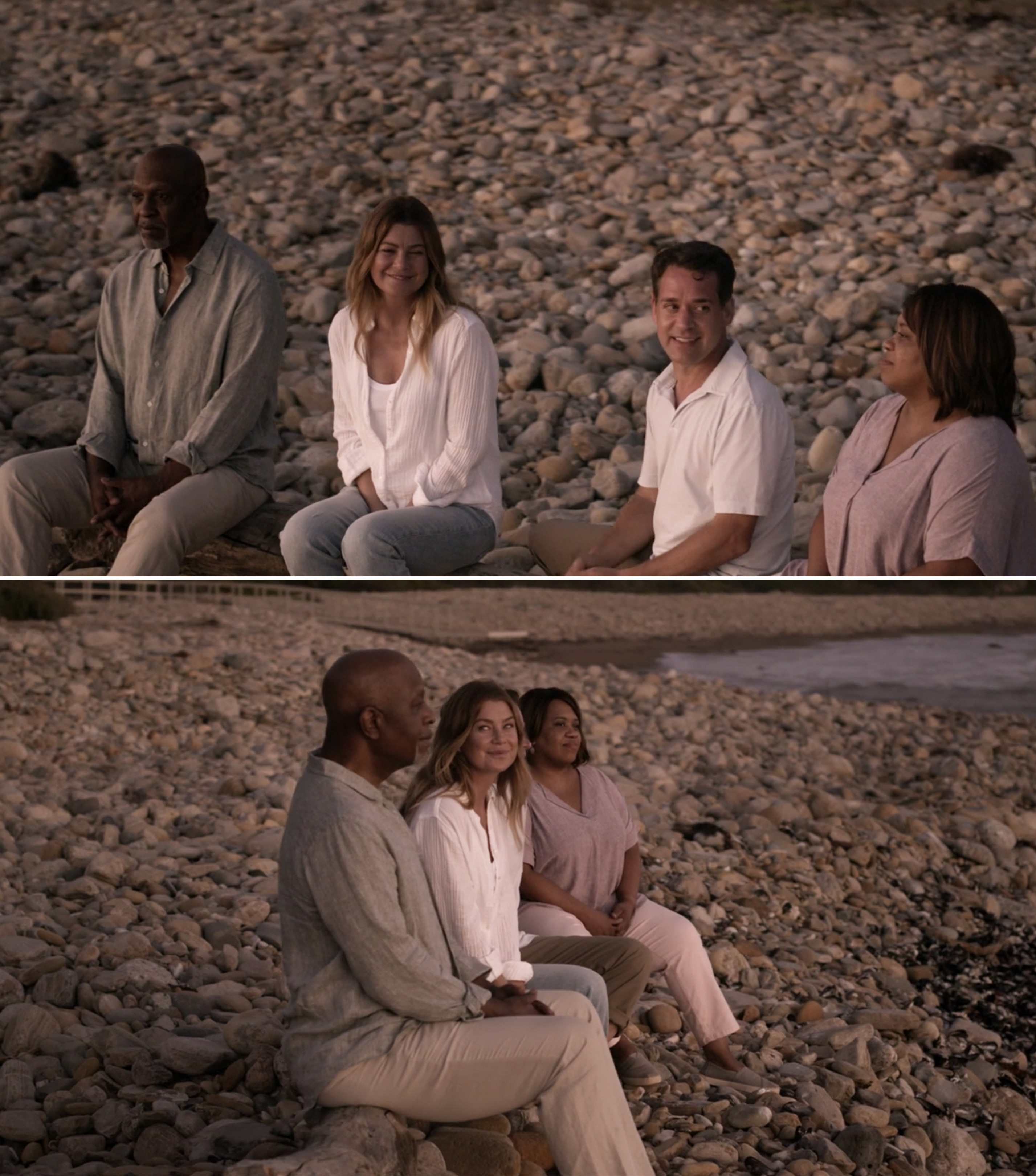 Richard, Meredith, George, and Bailey sitting on a log on the beach
