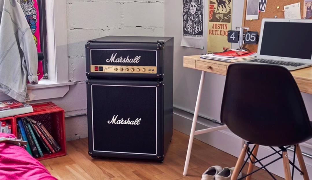 The speaker fridge combo