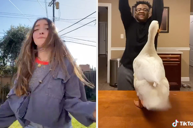 The Most Viral Tiktok Songs Of 2020 So Far