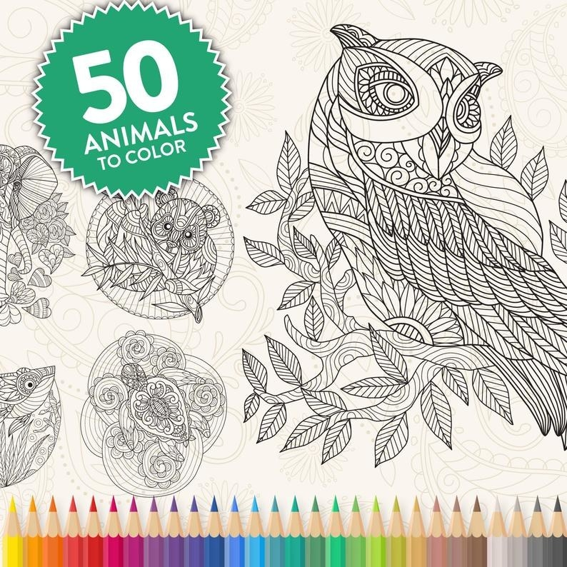 """A sample of some of the intricate animal designs including an owl, elephant, and koala, with the text """"50 animals to color"""""""