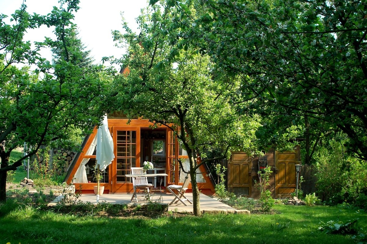 A wooden A-frame house with a deck and seating, surrounded by leafy trees