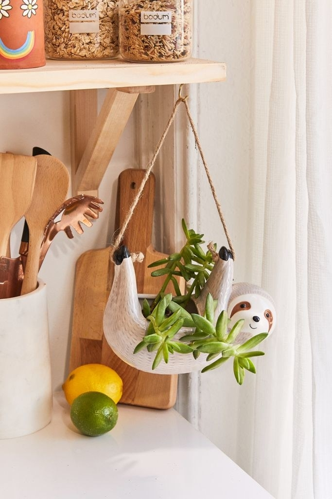 the planter hanging from a rope with a plant inside of it