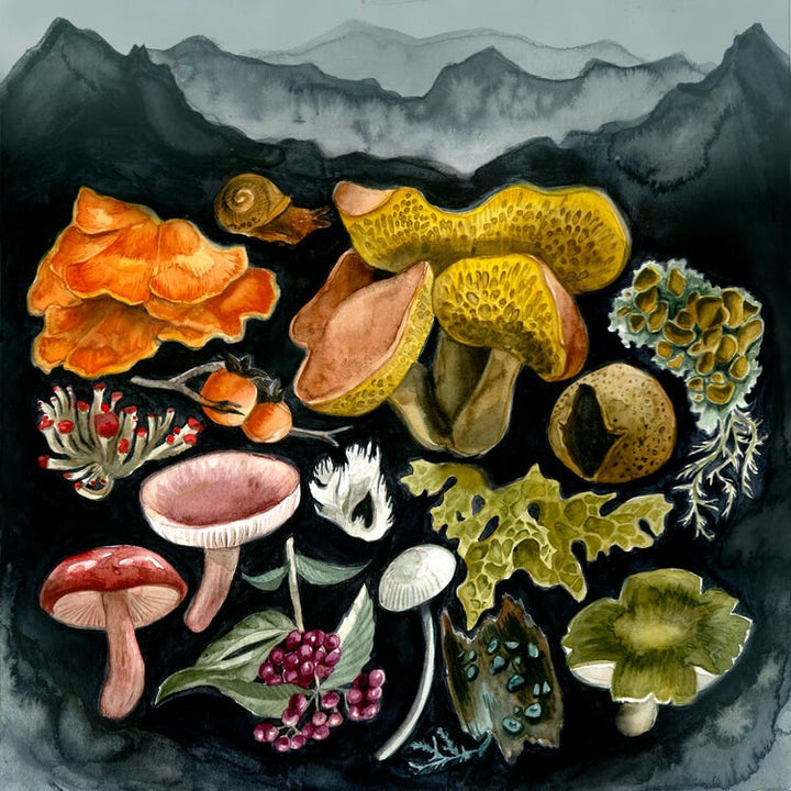 archival print of watercolor mushrooms