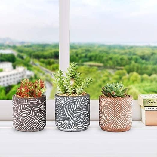 Three textured succulent plant pots
