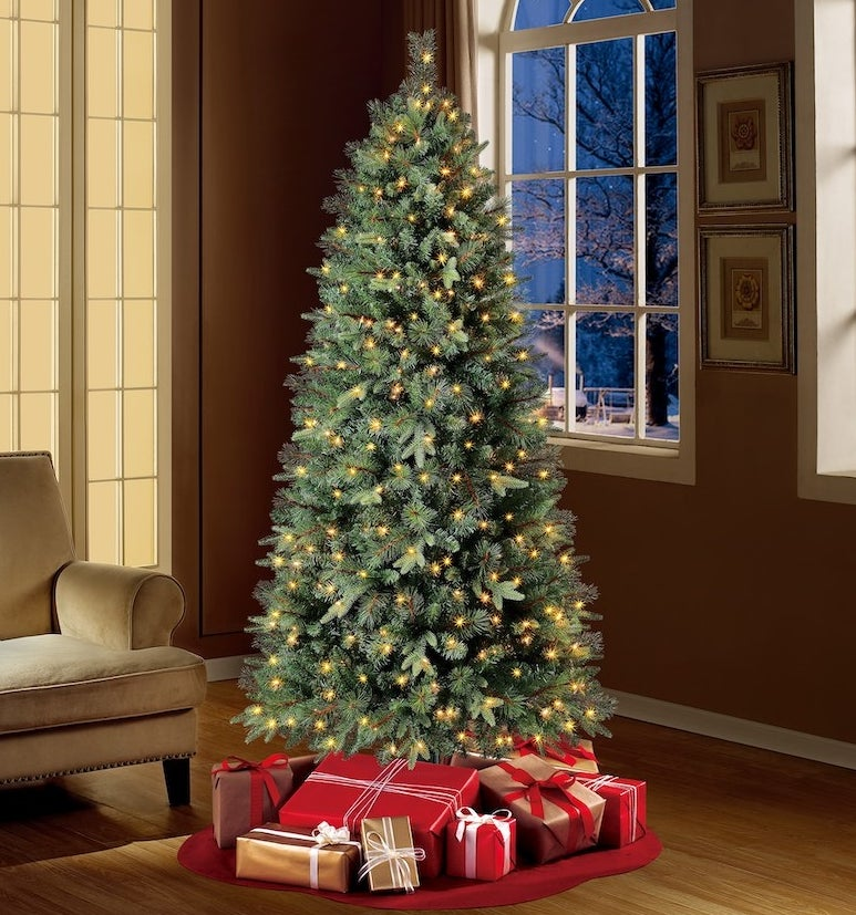 The Christmas tree in a living room adorned with clear lights and presents underneath it