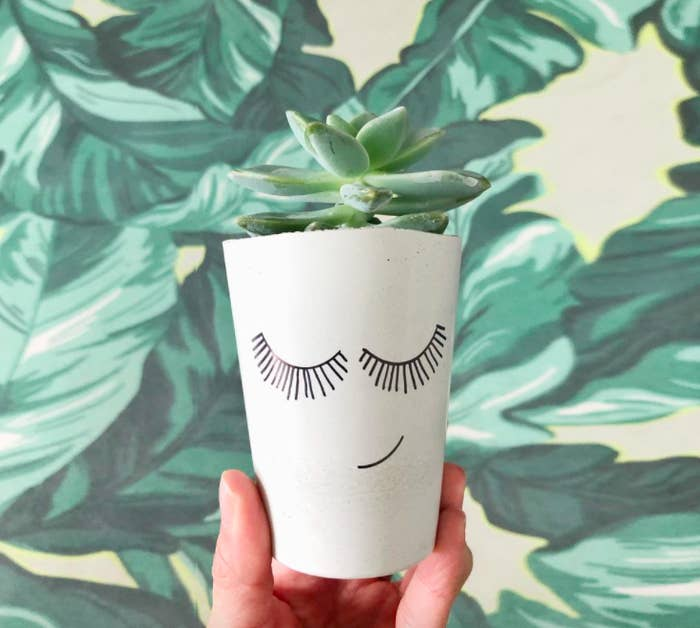A person holding a smiling ceramic succulent pot against a leafy wallpaper
