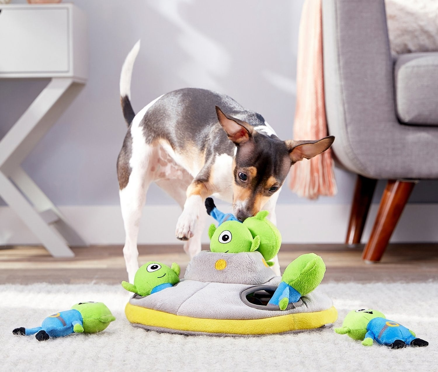 dog playing with little alien plushies
