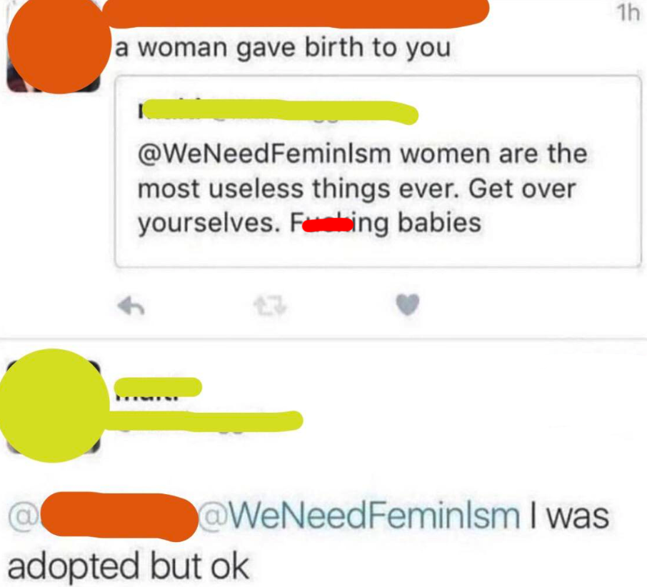 twitter posts of someone saying women are useless and then someone says a woman gave birth to you and they say they were adopted
