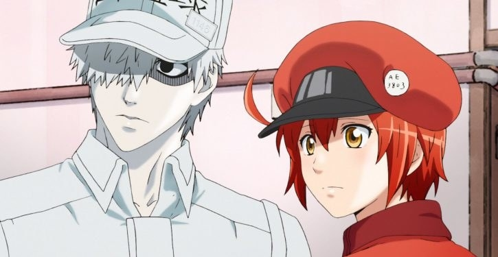 A white blood cell named U-1146 in the shape of a man and a red blood cell named AE3803 in the shape of a woman