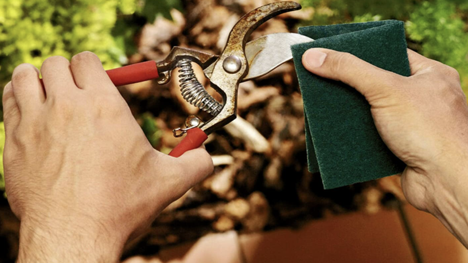 Person uses scour pads to clean gardening tool