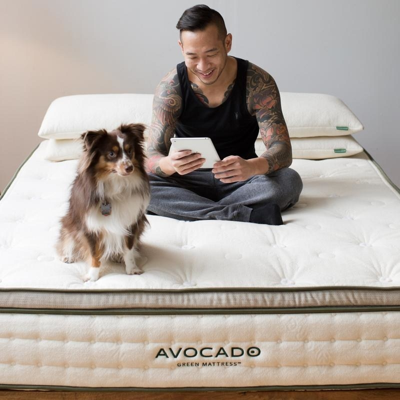 a model and a dog sit on top of the organic mattress