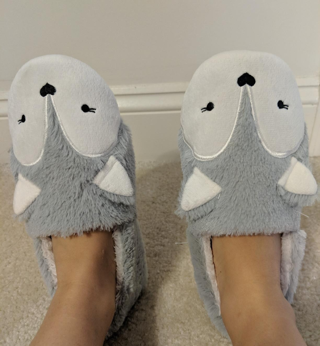 A close-up of the slippers worn by a buyer