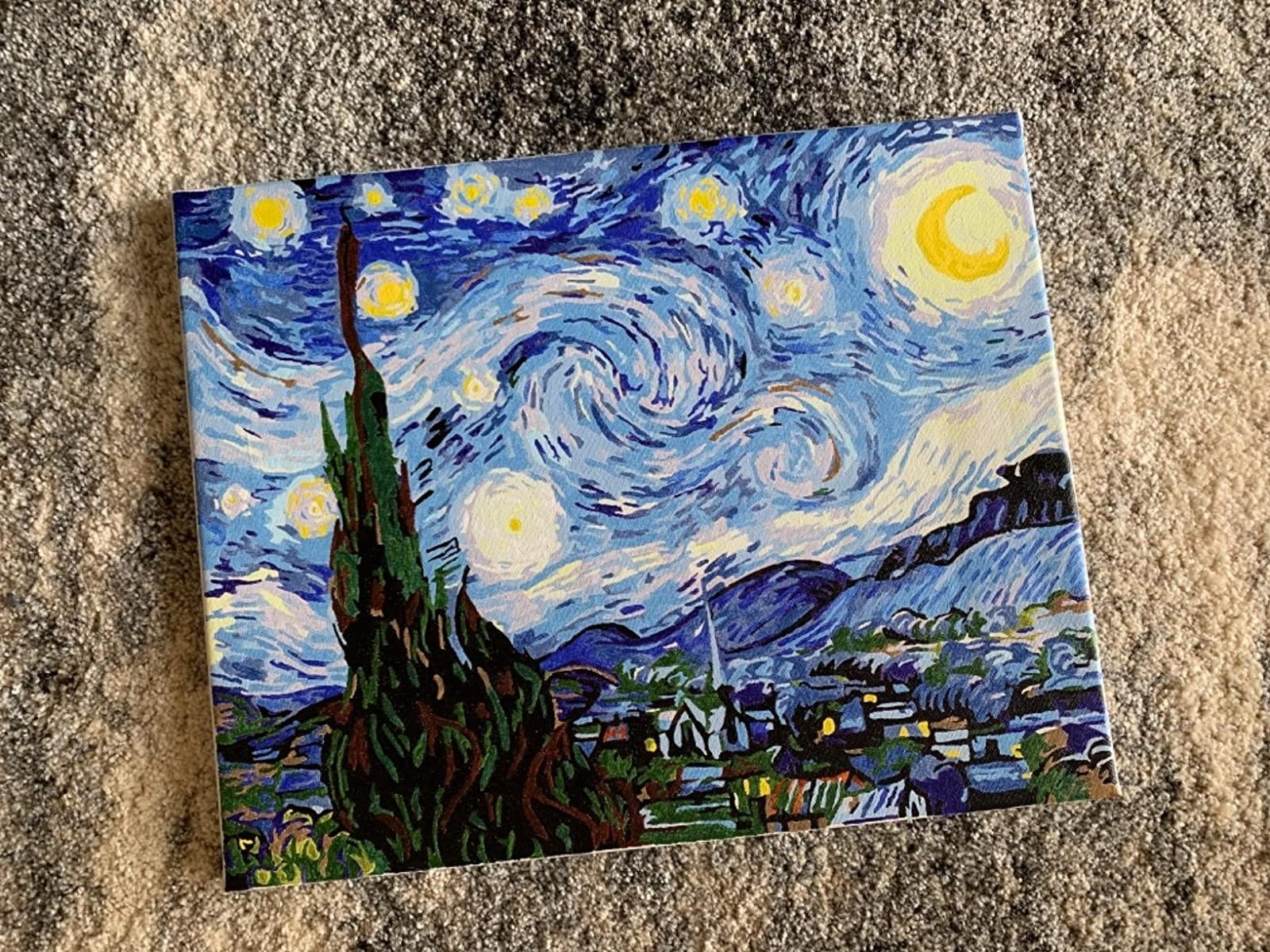 A completed paint-by-numbers canvas