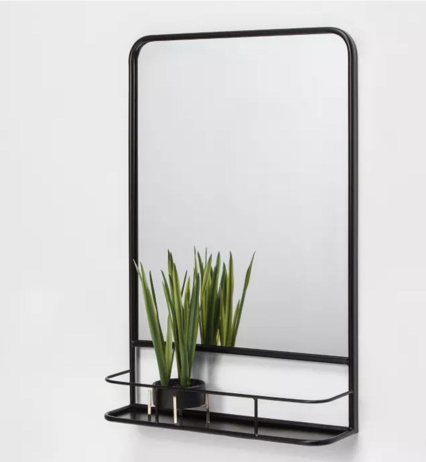 The mirror displaying a small plant on its shelf