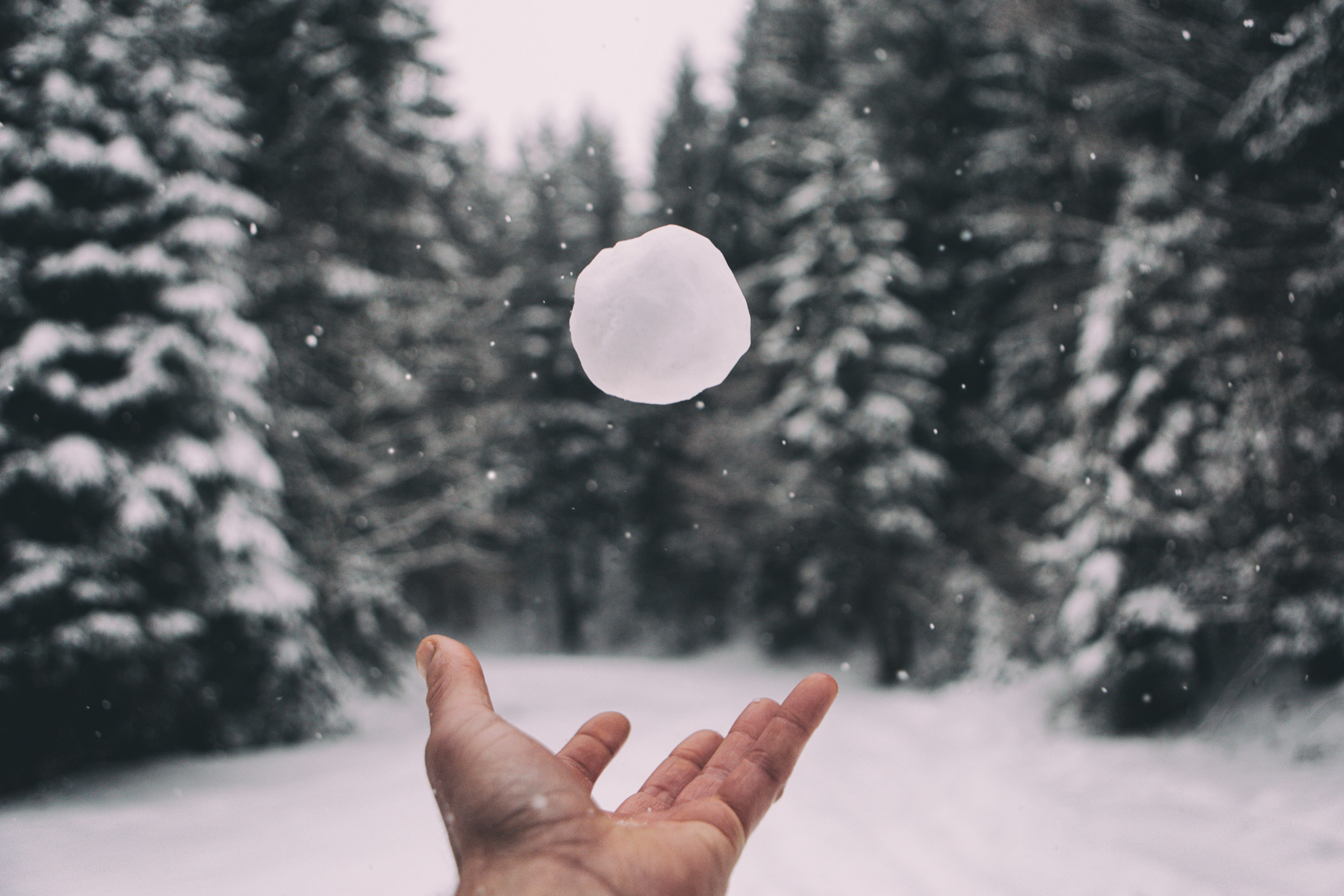 Person tossing a snowball in the air