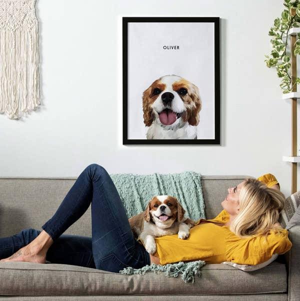 The pet portrait